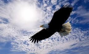 Spirit soaring!