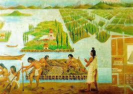 Inca and Aztec grew crops on island sized floating rafts.