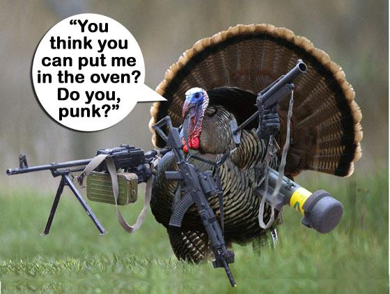 turkeyputmeintheoven